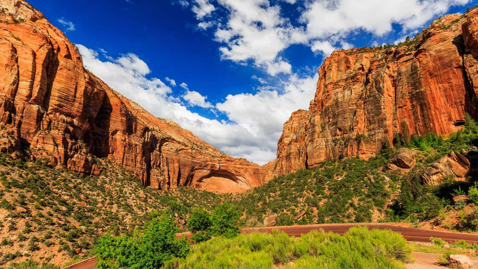 zion national park guided tours