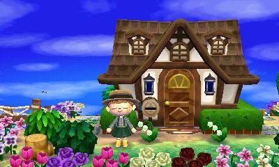 animal crossing new leaf house exterior guide pictures