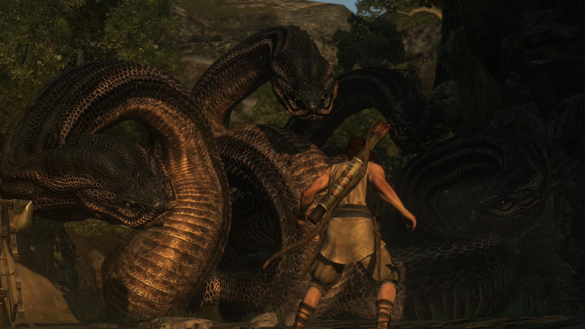 guide dragon dogma dark arisen